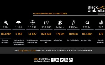 Impressive growth of Black SMEs